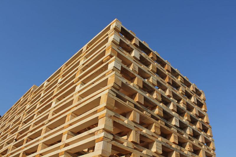 Produzione pallet in legno per ortofrutta for Arredamento ortofrutta in legno